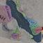 Imperator: Rome'da Agresif Genişleme ve Oyunun Başlangıcında Etiyopya