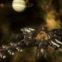 Stellaris'te Juggernaut ve Mega Tersaneler