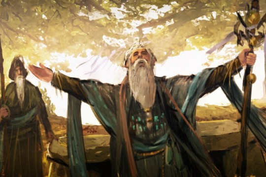Knights of Honor II: Sovereign'de Din